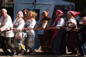 Veresk-festivaalilla tanssittiin letkajenkkaa. Kuvaaja Ed Dijkhuizen.