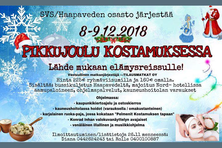 Suomi-Venäjä-Seuran Haapaveden osaston pikkujoulujuhlat Kostamuksessa 2018